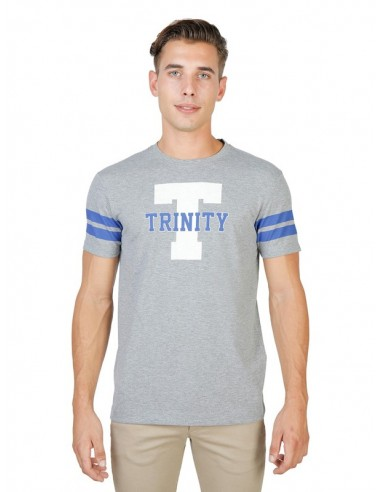 Camiseta Oxford university Trinity - stripped grey