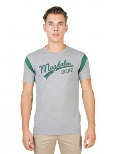 Camiseta Oxford university varsity - grey