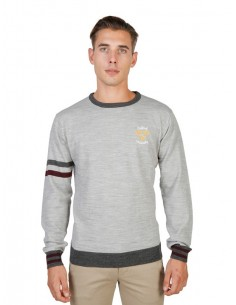 Jersey Oxford university de cuello redondo - gris