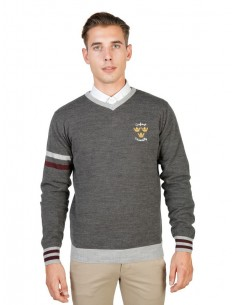 Jersey Oxford university de cuello pico - gris