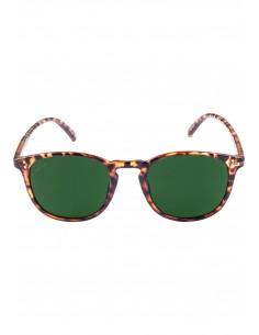 Gafas de sol de Masterdis - havanna/green