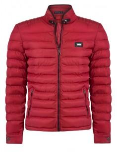 Sir Raymond Tailor chaqueta plumas - red