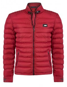 Sir Raymond Tailor chaqueta plumas - red